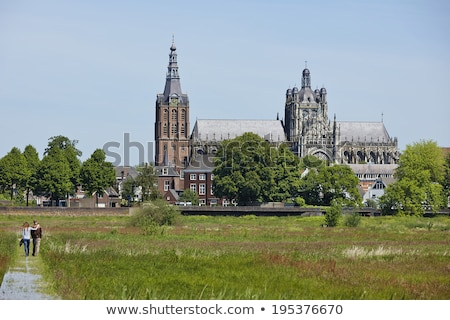 Cattedrale Paesi Bassi romana cattolico chiesa altezza Foto d'archivio © borisb17
