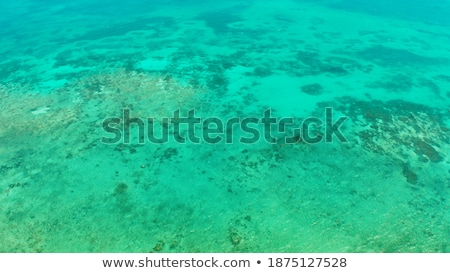 şeffaf masmavi su Yunanistan okyanus Stok fotoğraf © ShustrikS