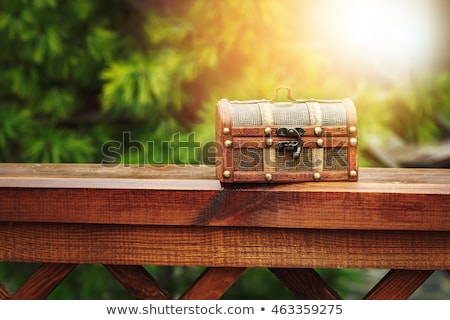 Closed wooden chest box outdoors in nature Stock photo © dariazu