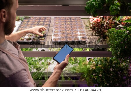 Young contemporary male farmer or selectionist scrolling in smartphone Stock photo © pressmaster