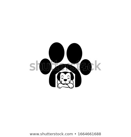Pet Shop Exterior and Service, Website Collection Stock photo © robuart