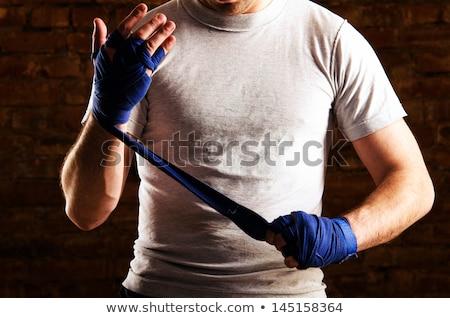 Gemengd vechtsporten vechter klaar strijd succes Stockfoto © Jasminko