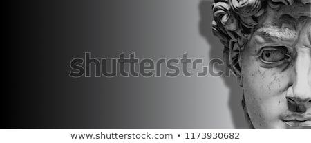 David of Michelangelo Stock photo © Koufax73