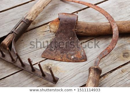 Old rake Stock photo © Stocksnapper