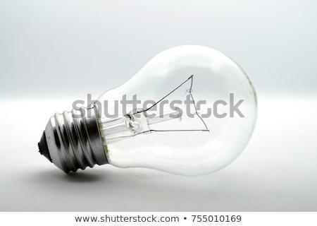 gloeilamp · geïsoleerd · zwarte · bevroren · licht - stockfoto © kitch