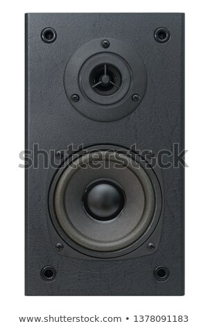 Two speakers, side by side. Stock photo © justinb