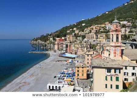 Promenade Italië verbazingwekkend kleine stad huis zee Stockfoto © Antonio-S
