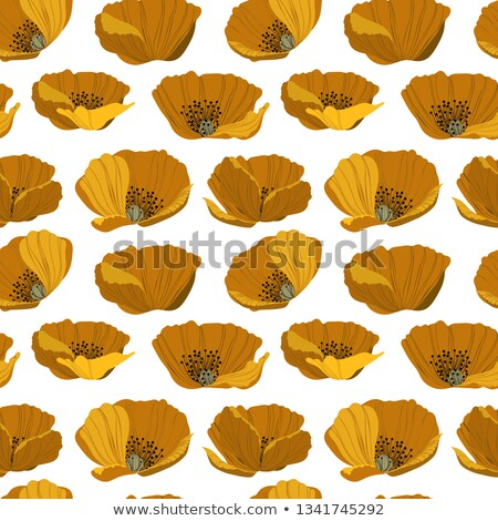 コア ビッグ 美しい 花 内部 ストックフォト © pzaxe