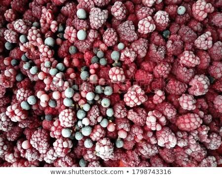 Vad málna mélyhűtő piros szőlő étel gyümölcs Stock fotó © taviphoto