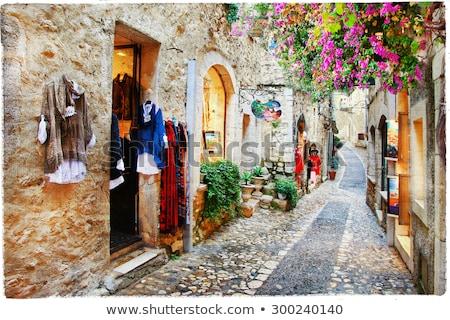village · rue · jardin · nom · plantes · fenêtres - photo stock © forgiss