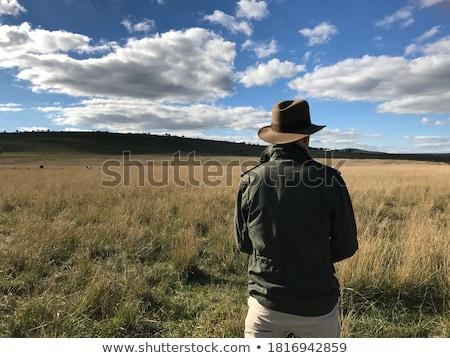Fedora mode hoed Stockfoto © zzve