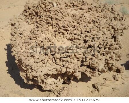 Gül sahara mineral özel soyut çöl Stok fotoğraf © jonnysek