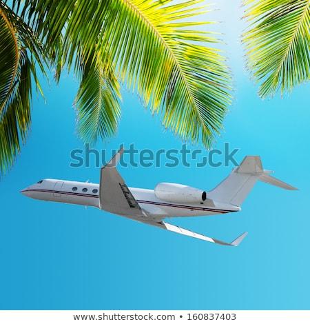 tropische · vakantie · vierkante · sexy · mode · landschap - stockfoto © moses