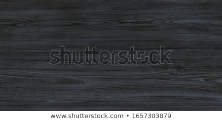 Textura de madeira metal quadro naturalismo padrão parede Foto stock © stevanovicigor