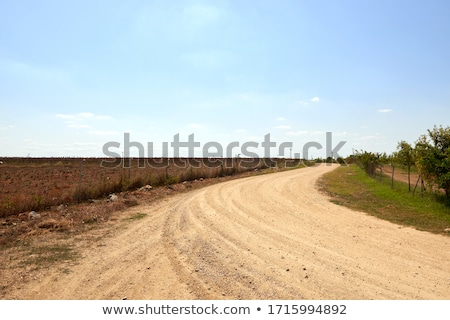 Dirty Dusty Rural Road In Countryside. Stock photo © ryhor