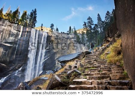 Parque nacional de yosemite borroso río exuberante forestales montana Foto stock © pictureguy