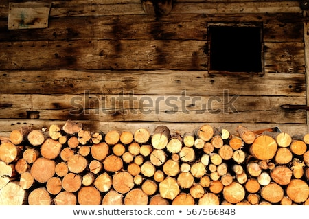 Log cabin background Stock photo © njnightsky