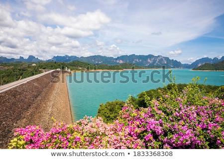 Scenico punto verde lago view Foto d'archivio © Yongkiet