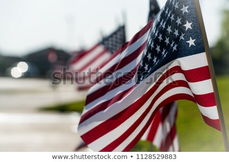 A row of American flags Stock photo © phakimata