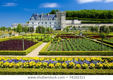 Gardens and Chateau de Villandry  in  Loire Valley in France  Stock photo © wjarek