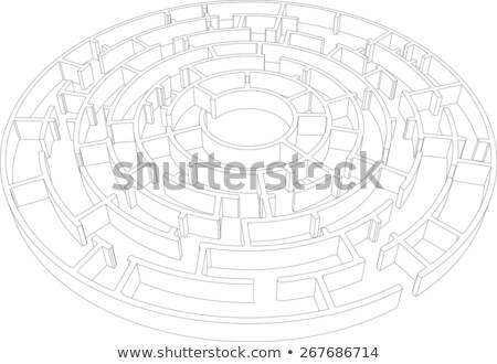 Wire-frame round intricate labyrinth. Vector Stock photo © cherezoff