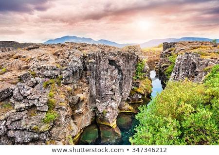 scénique · vue · célèbre · Islande · eau · herbe - photo stock © elxeneize