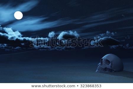 3D 頭蓋骨 砂漠 1泊 3dのレンダリング 埋もれた ストックフォト © kjpargeter
