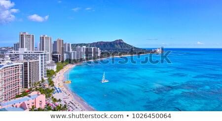 Waikiki plaj panorama batı Stok fotoğraf © kraskoff