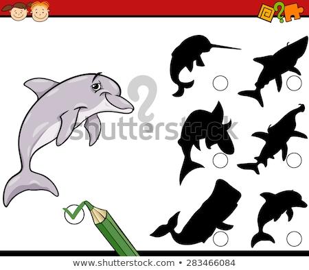 Ombra accoppiamento gioco pesce illustrazione scuola Foto d'archivio © bluering
