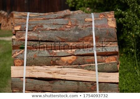 Bundle of firewood Stock photo © Taigi