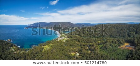View from Pirate Bay at Eaglehawk Neck, Tasmania Stock photo © artistrobd