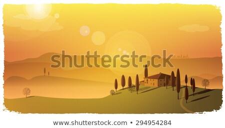 ősz napos Toszkána tájkép gyönyörű dombok Stock fotó © Taiga