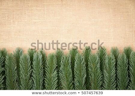 Border of artificial pine foliage on burlap Stock photo © ozgur