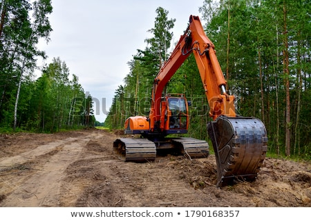 Excavator in a pine forest Stock photo © Nobilior