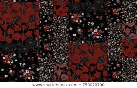 Klaprozen lapwerk liefde hart poppy bloeien Stockfoto © guffoto