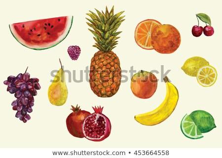taze · dilim · ananas · ahşap · meyve · yeşil - stok fotoğraf © sonya_illustrations