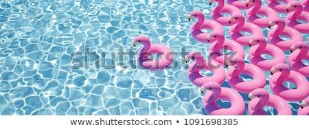 розовый · фламинго · пляж · надувной · песок · лет - Сток-фото © adrenalina