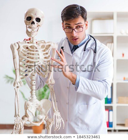 yong male doctor with skeleton isolated on white stock photo © elnur