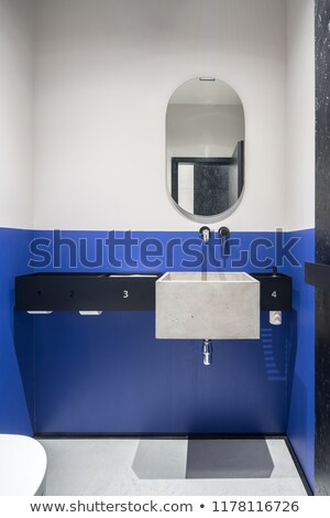 toalett · üzlet · iroda · bejárat · fehér · mosdókagyló - stock fotó © bezikus