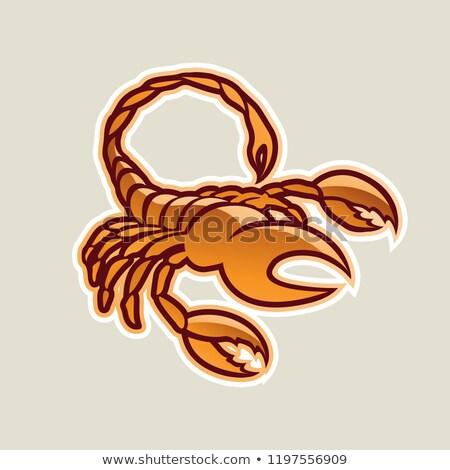 Arancione lucido scorpione icona vettore illustrazione Foto d'archivio © cidepix