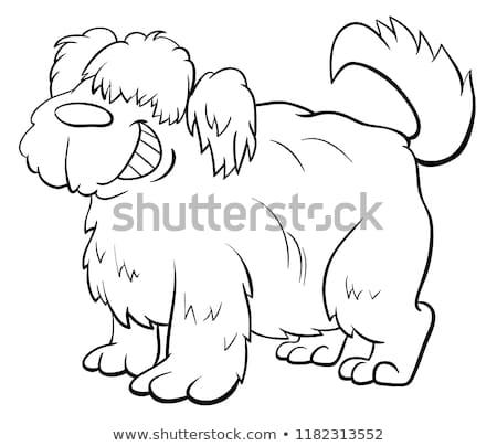shaggy sheep dog character coloring book Stock photo © izakowski