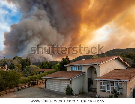 brandweerman · huis · witte · 3d · illustration · vrouw · brand - stockfoto © fouroaks
