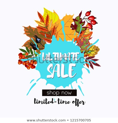 Ultimate sale design with fall leaves wreath  Stock photo © TasiPas