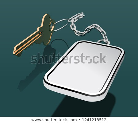 Key with keychain on a chain, with a place for your logo. Mock up vector Stock photo © m_pavlov