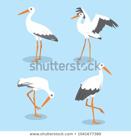 Karikatur Storch Zeichen Illustration Vogel weiß Stock foto © cthoman