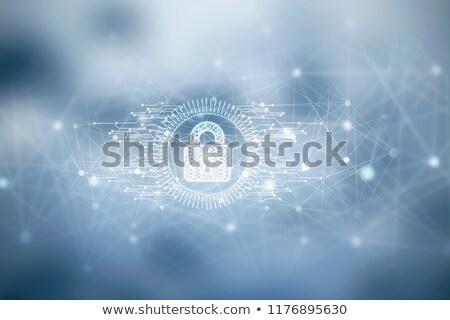 intimidad · datos · personal · información · protección - foto stock © mazirama