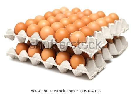 tray of raw chicken eggs stock photo © alex9500