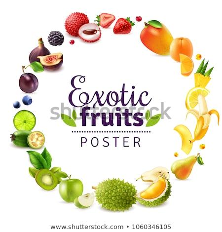 Egzotyczny soczysty owoców wektora plakat ramki Zdjęcia stock © robuart