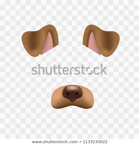 tacskó · kutya · ikon · szürke · mosoly · háttér - stock fotó © robuart