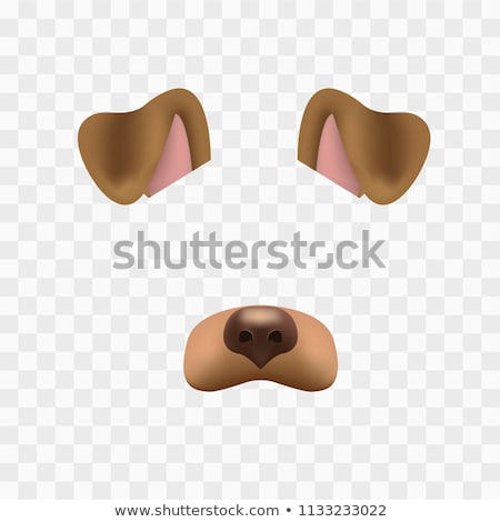 Aranyos kutya torkolat rajz vektor ikon Stock fotó © robuart
